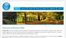 Website for Enzyme R&D in Ioannina, Epirus